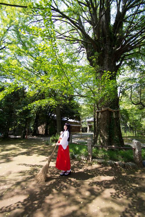 美少女戦士セーラームーン セーラーマーズ/火野レイ コスプレ写真集「diamond」サンプル